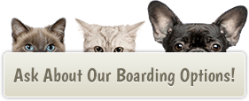 Ask About Our Boarding Options!