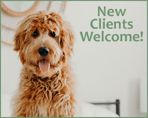 New Clients Welcome